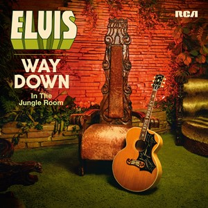 Elvis Presley - Way Down In The Jungle Room